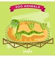 Zoo Animal Snake vector image
