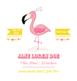 Baby Shower or Arrival Card - Baby Flamingo Girl