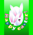 easter greeting card invitation banner rabbits vector image
