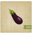 aubergine eco background vector image