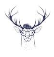 Deer head in glasses vector image