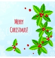 Paper Christmas greeting card with holly vector image