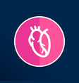 red human heart icon cardio cardiovascular vector image