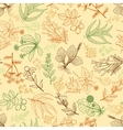 Herbs background in hand drawn style vector image