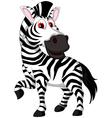cute zebra cartoon posing vector image vector image