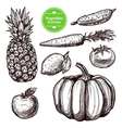 Vegetables And Fruits Set vector image
