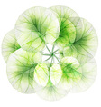 Watercolor floral round patterns vector image