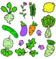 doodle of vegetables set various vector image