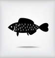 fish cute vector image vector image