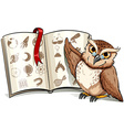 Owl beside the book vector image