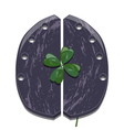 Clover and horseshoe for cows vector image