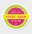 paper cut out sticker final summer sale vector image