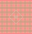 plaid fabric cage back pattern red and brown vector image