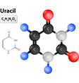 Uracil molecule vector image vector image