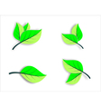 Floral icons green leaves vector image
