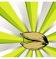 pistachio vector image