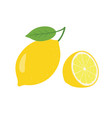 lemon fresh lemon fruits collection of vector image