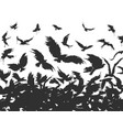 flock of birds in black vector image