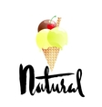 Ice cream cartoon with natural lettering isolated vector image