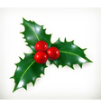Holly traditional Christmas decoration icon vector image