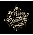 Merry Christmas text with golden snowflakes vector image