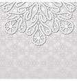 Realistic lace background vector image