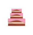 delicious cake to celebrate special day vector image