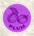 plum vintage paper vector image