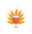 snifter beer in transparent glassware vector image