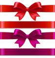 color bows vector image