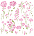 hand drawn pink flowers vector image