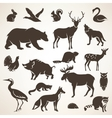 european forrest wild animals collection of vector image