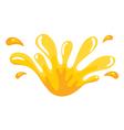 Yellow color splash vector image