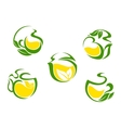 Tea symbols with lemon and green leaves vector image vector image