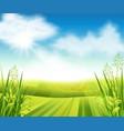 green farm field vector image