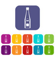 Bottle of ketchup icons set flat vector image