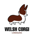 Cute cartoon drawing of welsh corgi vector image