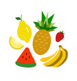 with fruits vector image
