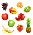 Fruits set of vector image