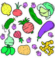 doodle of vegetable various colorful set vector image