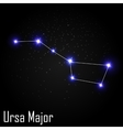 Ursa Major Constellation with Beautiful Bright vector image