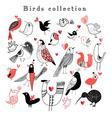 Graphic set of different birds vector image