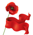 poppy and ribbon vector image