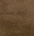 Leather Texture 2 vector image vector image