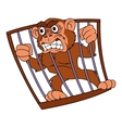 Angry monkey in cage 2 vector image