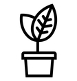 Thin young plant in pot vector image