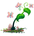 A green plant with butterflies vector image