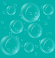 Translucent bubbles vector image