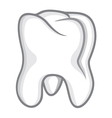 Tooth isolate on white vector image