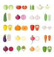 Set of flat vegetables vector image